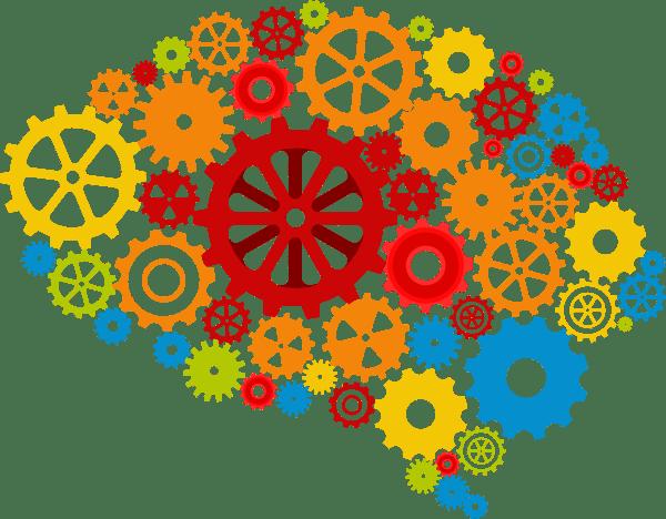 La naissance des neurosciences (seconde partie)